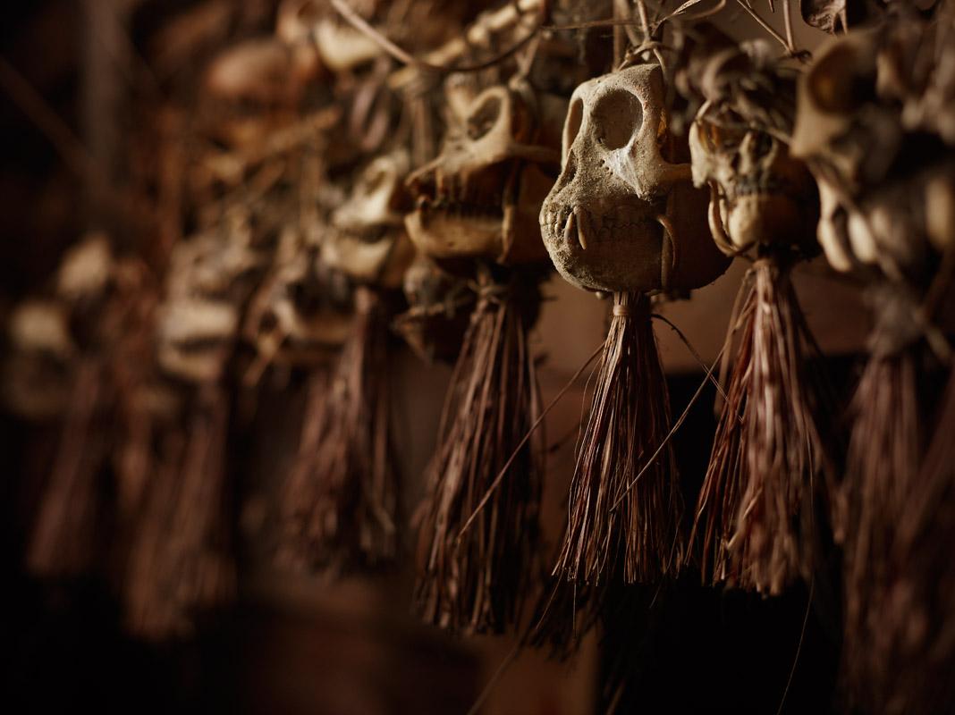 Monkey Skull Shrine
